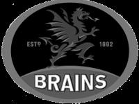 Brains - Copy